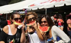 California Activity Guide Events Festivals Shows