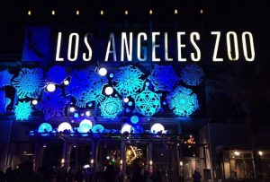 L.A. Zoo Lights Discount Tickets