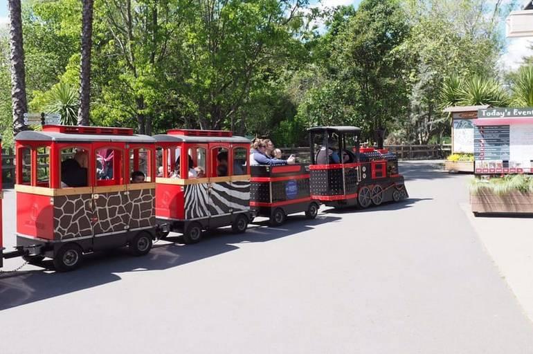 Sacramento Zoo Train Ride