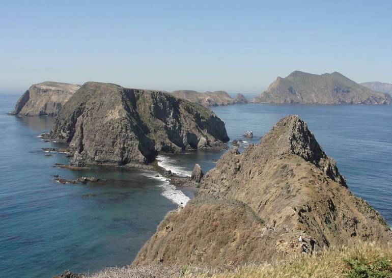 Channel Islands National Park Day Trip