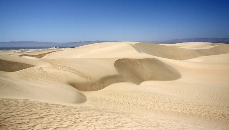 Oceano Dunes Camping Pismo Beach