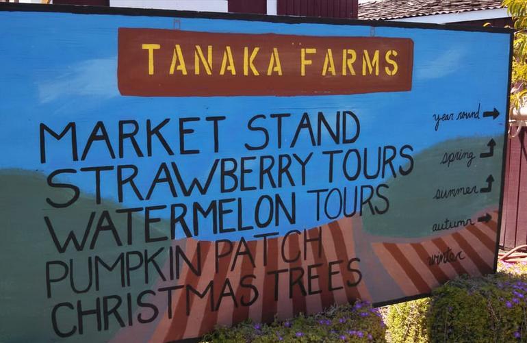 Tanaka Farms Irvine