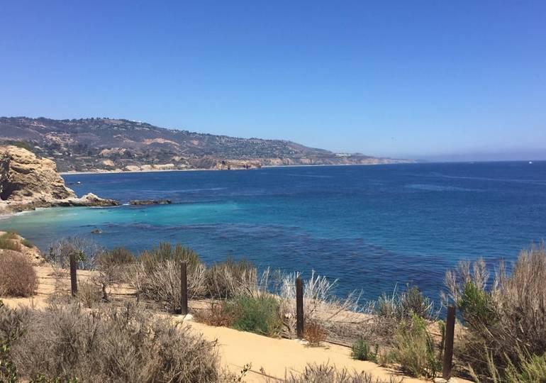 Terranea Resort Whale Watching