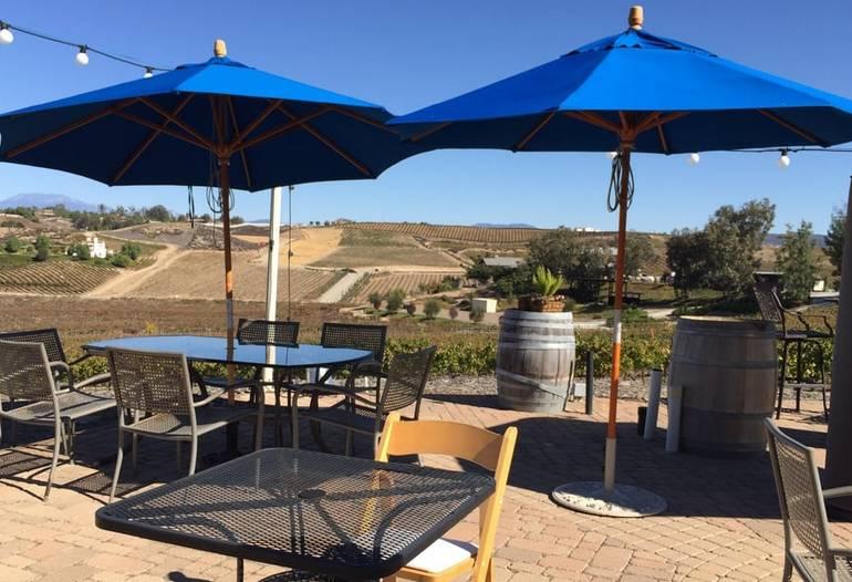Wine Tasting Vindemia Estate Winery