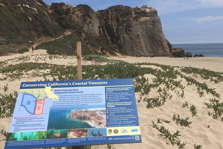 Zuma Beach Malibu Day Trip