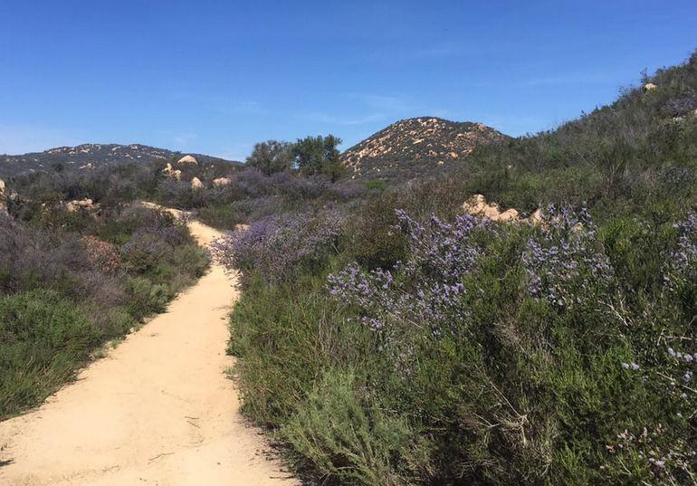 Daley Ranch Escondido California