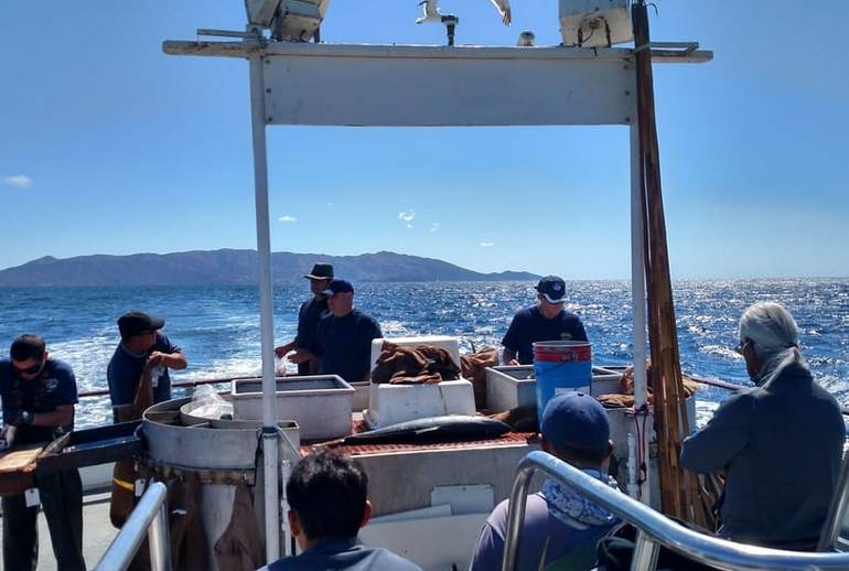 Southern California Sports Fishing