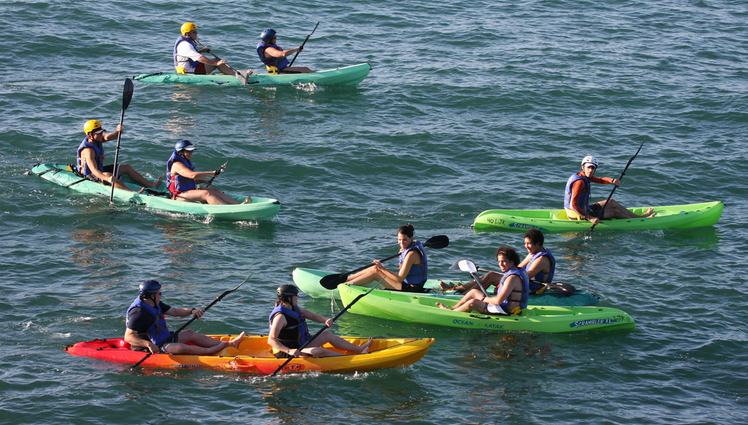Guided Kayak Tour