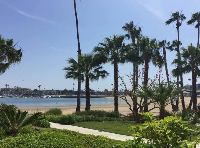 Mother's Beach Marina Del Rey California