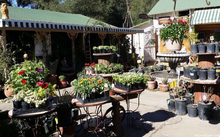Myrtle Creek Botanical Gardens Fallbrook CA