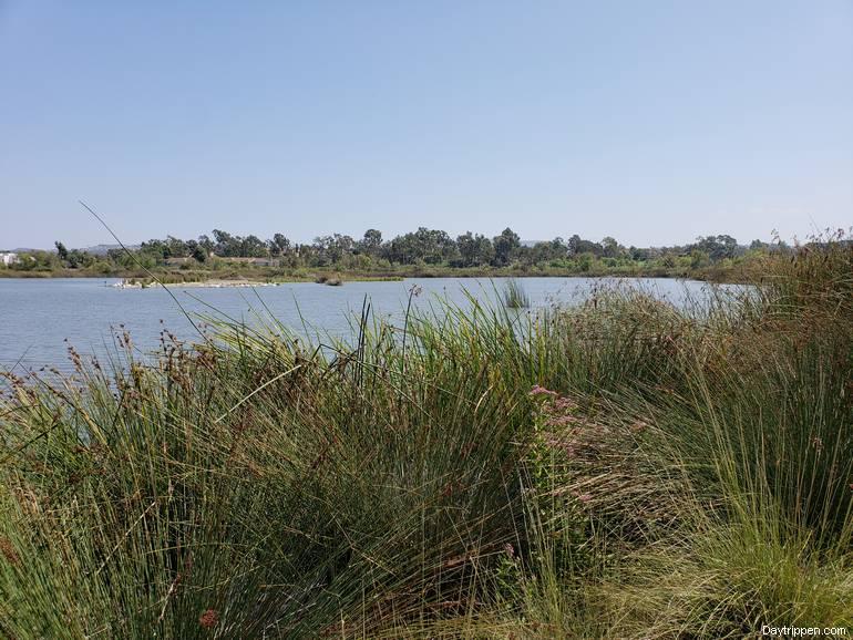 San Joaquin Wildlife Sanctuary