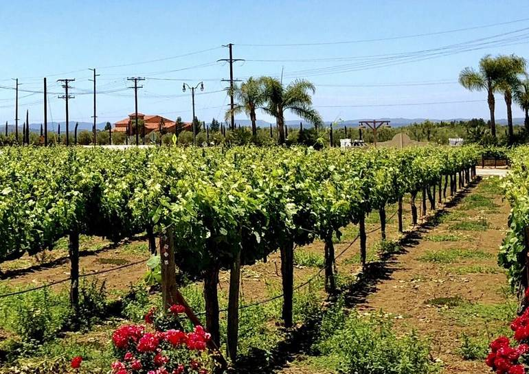 South Coast Winery Resort and Spa