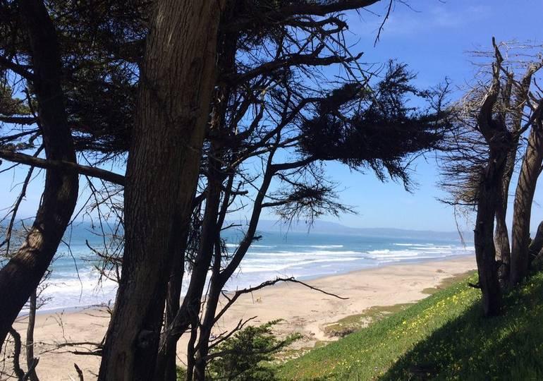 Sunset State Beach Bluff
