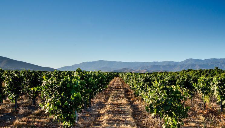 Temecula Valley California