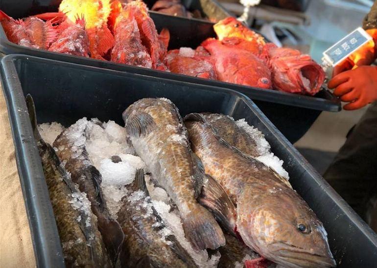 Ventura Harbor Dockside Fish Market