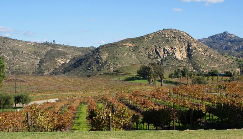 Orfila Vineyards