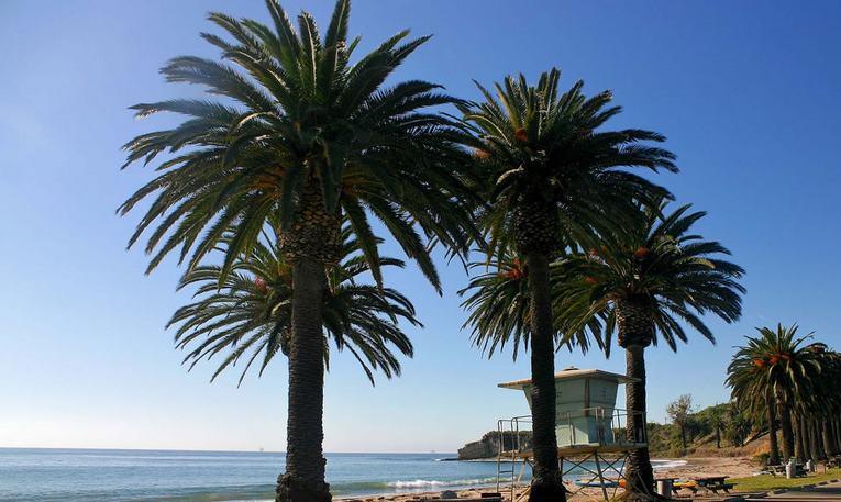 Refugio State Beach Camping Reservations Santa Barbara
