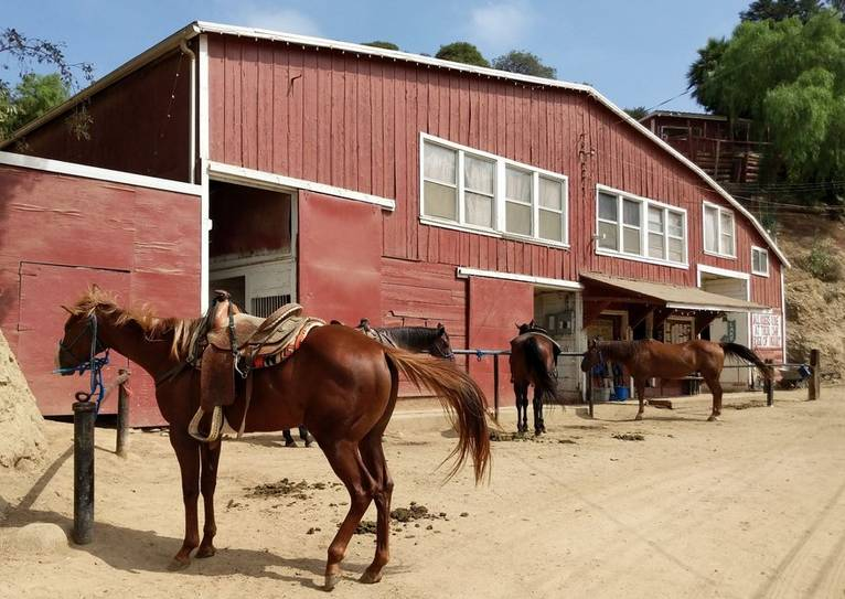 Sunset Ranch Hollywood Stables