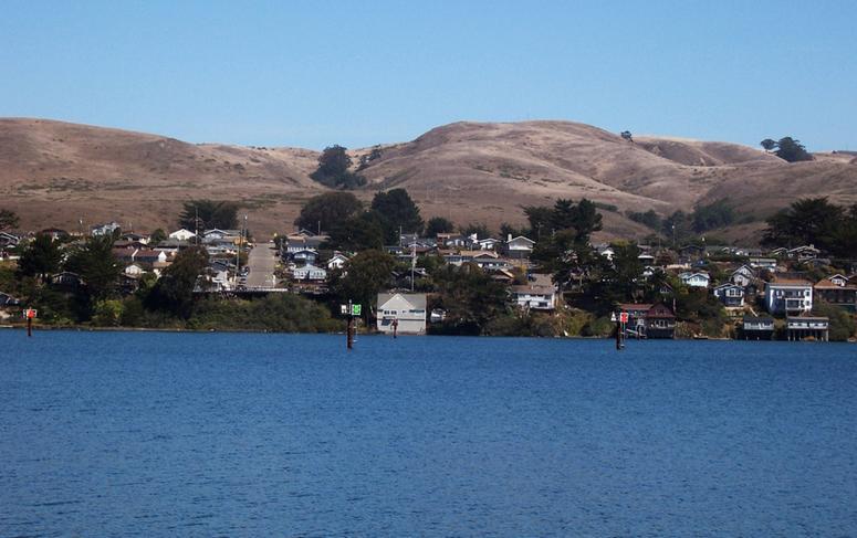 Bodega Bay San Francisco day trip