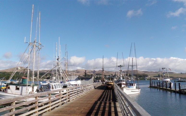 Bodega Bay Fishing Boats