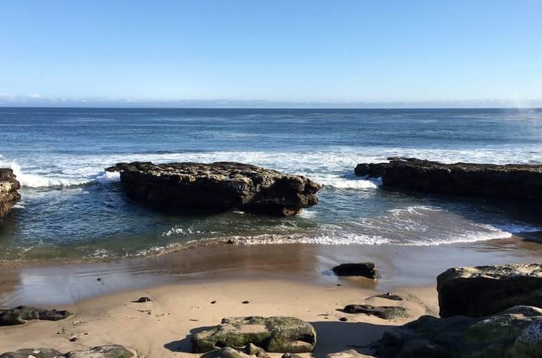 Natural Bridges State Beach Santa Cruz California