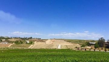 Temecula Valley Wine Tasting Vindemia Estate Winery