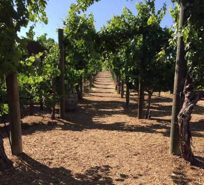 Wilson Creek Winery Temecula