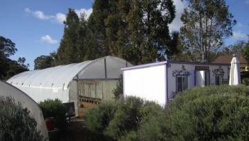 Luffa Farm Nipomo Central Coast Side Trip