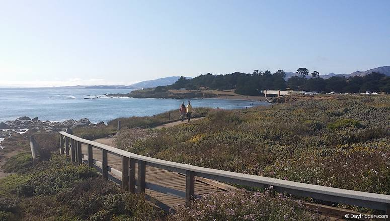 Cambria Oceanfront Boardwalk