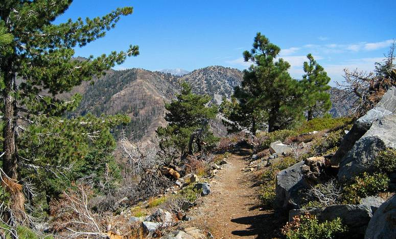 Table Mountain Wrightwood Nature Trail