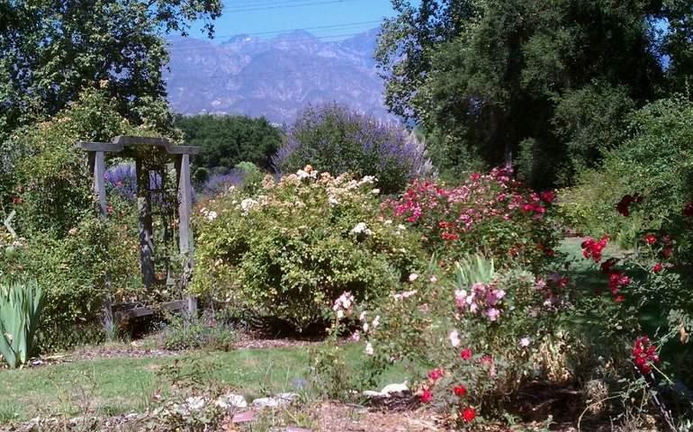 Descanso Garden