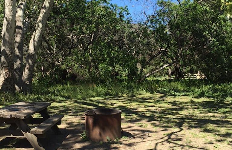 Leo Carrillo State Park Campsite