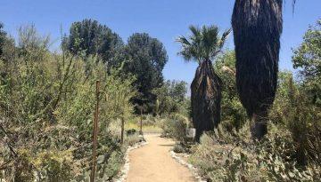 Rancho Santa Ana Botanic Garden Day Trip