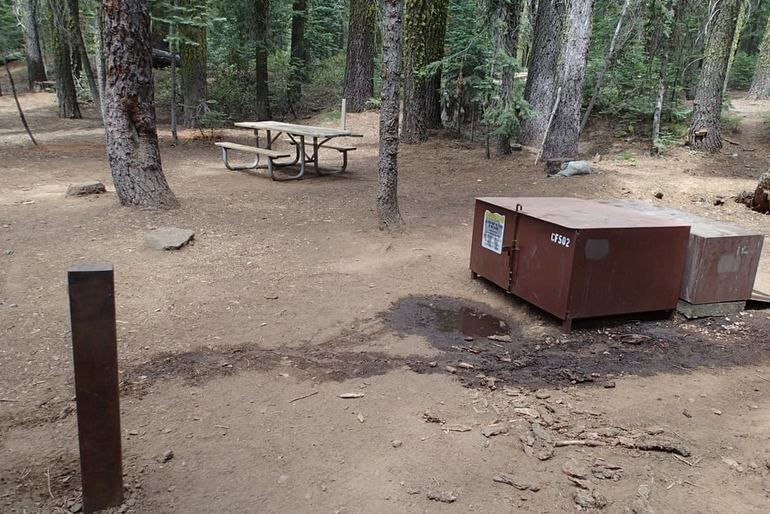 Crane Flat Campground Typical Campsite