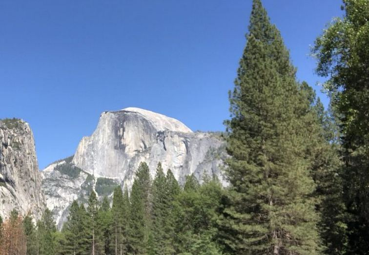 View from Upper Pines Campground