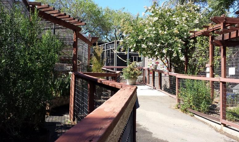 Folsom City Zoo Sanctuary