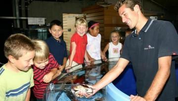 Dana Point Ocean Institute Day Trip