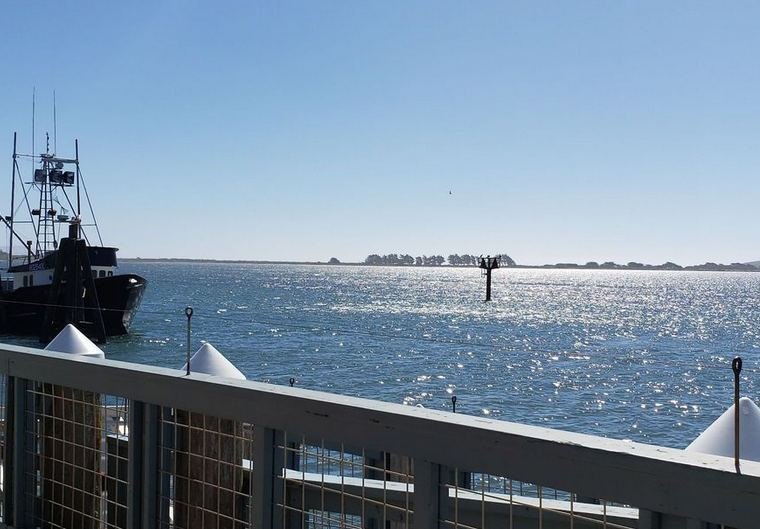 View from The Tides Wharf Restaurant