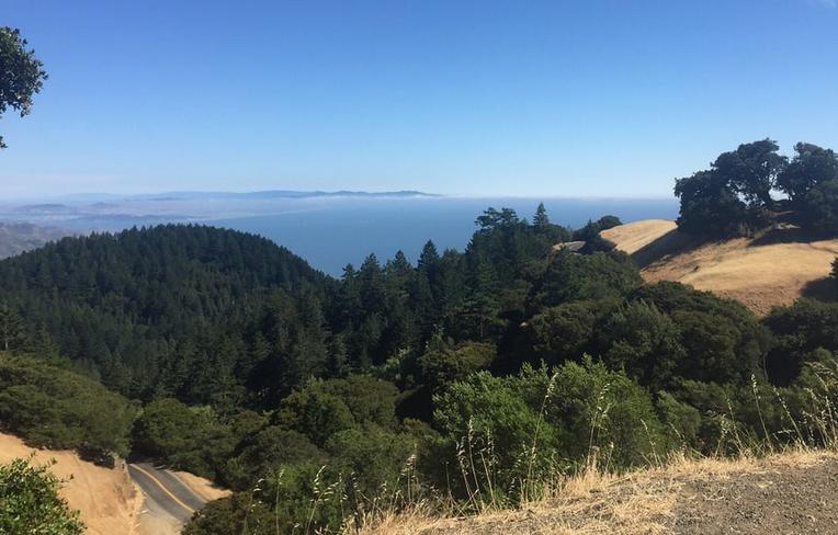 Mount Tamalpais State Park San Francisco Day Trip