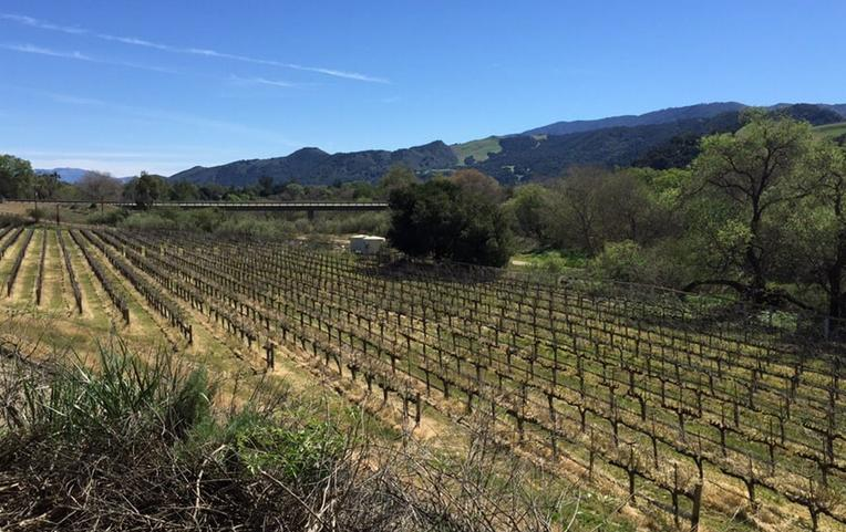 Santa Ynez California