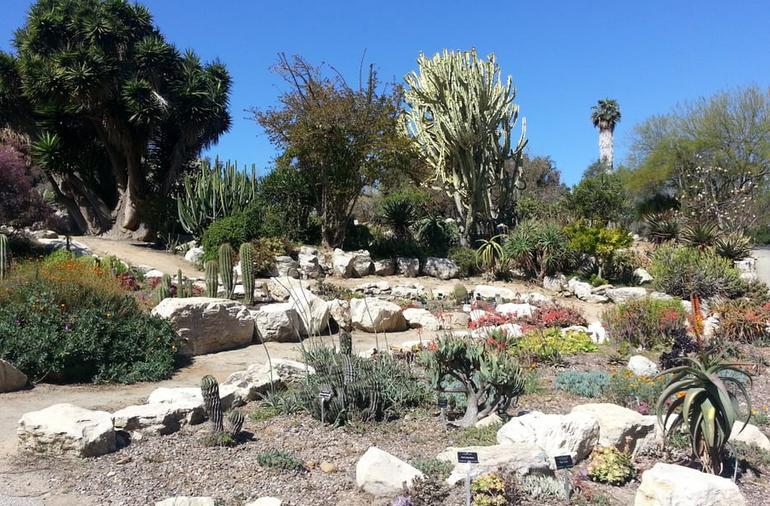 South Coast Botanic Gardens Desert Plants