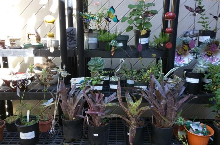 South Coast Botanic Gardens Gift Shop
