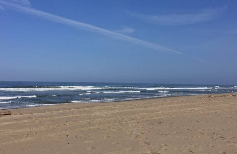Sunset State Beach Camping
