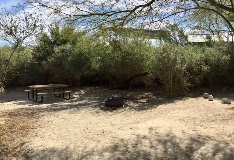 Agua Caliente Springs Park Campsite