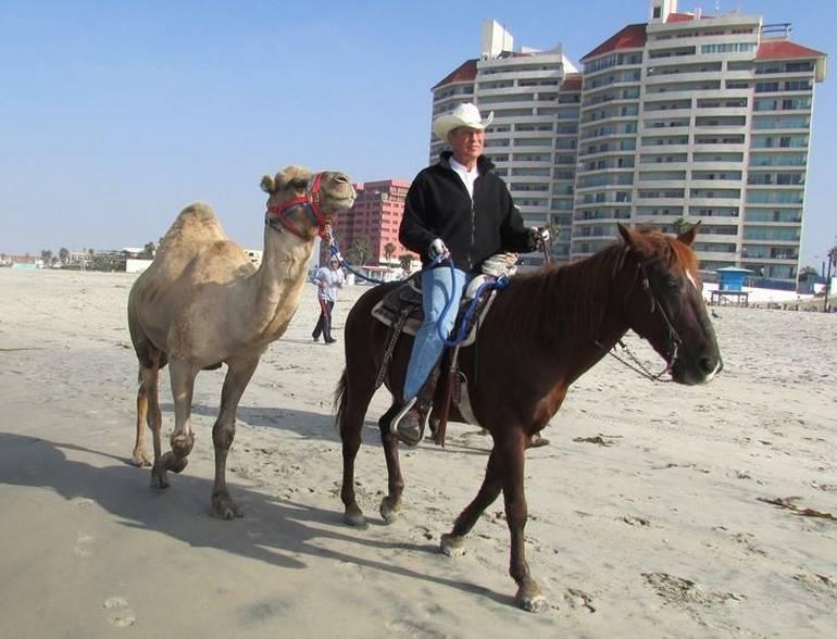 Rosarito Beach Ocean Sports Camel Rides