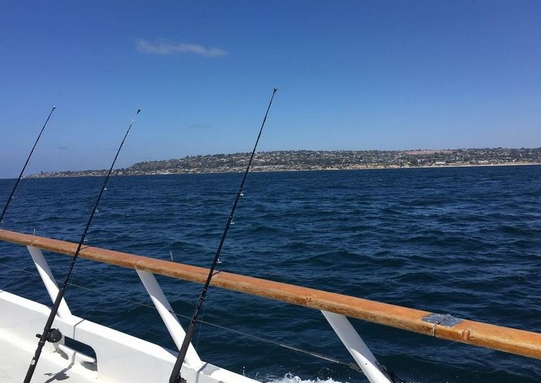 Seaforth Sportfishing San Diego