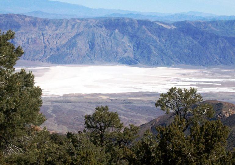 Wildrose Peak Trail View
